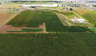 Hemp Farm/Processor for Sale
